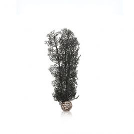 BiOrb Black Sea Fan - Medium