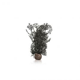 BiOrb Black Sea Fan - Small