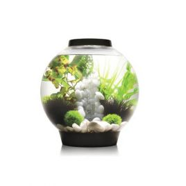 biOrb CLASSIC 30 LED Tropical - Black