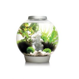 biOrb CLASSIC 30 LED Tropical - Silver
