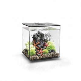Biorb Cube 30 Black - LED