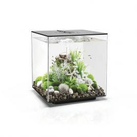 Biorb Cube 60 Black - LED