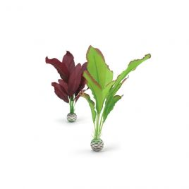 BiOrb Silk Plants (Purple/Green) - Medium