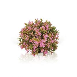 Biorb Pink Topiary Ball