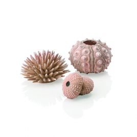 Biorb Sea Urchins Natural (x3)