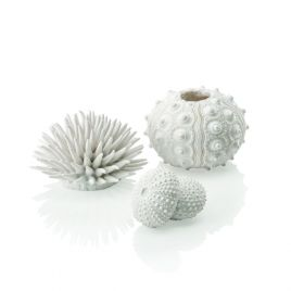 Biorb Sea Urchins White (x3)