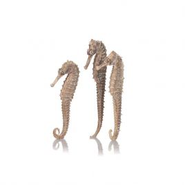 Biorb Seahorses 3 Pack - Natural