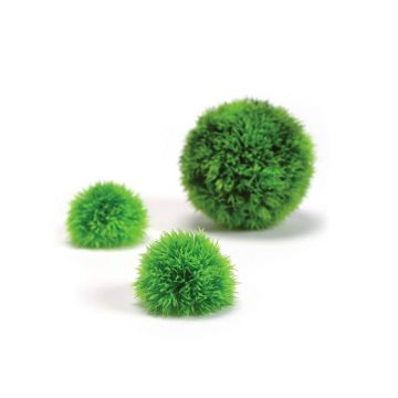 BiOrb Aquatic Topiary Pack