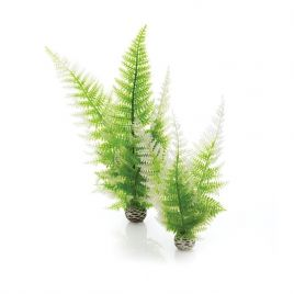 BiOrb Easy Plants -  Winter Fern (Medium x 2)