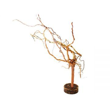 Hugo Tree Wood Medium (25-30cm)