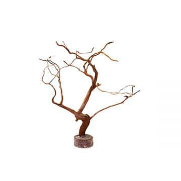 Hugo Tree Wood Small (15-24cm)