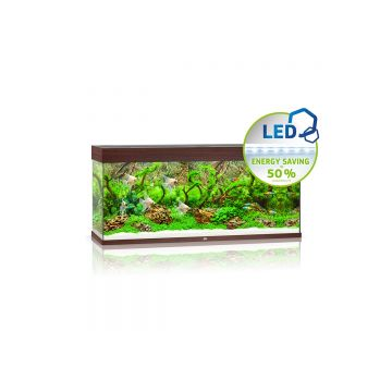 Juwel Rio 240 LED Aquarium (Dark Wood)