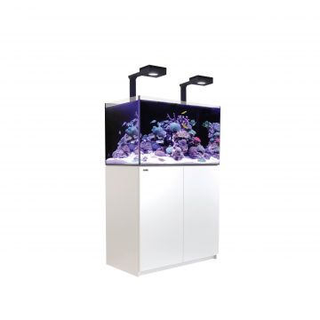 Red Sea Reefer 250 Deluxe Aquarium (White)