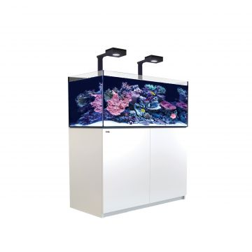 Red Sea Reefer XL 425 Deluxe Aquarium (White)