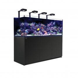 Red Sea Reefer XXL 750 Deluxe Aquarium (Black) (V3)