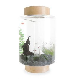 Norrom Aquarium with Natural Birch Lid and Base (Black stones)
