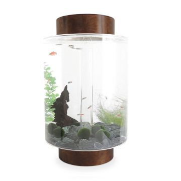Norrom Aquarium with Dark Mahogany Lid and Base (Black stones)