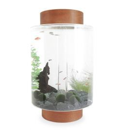 Norrom Aquarium with Light Mahogany Lid and Base (Black stones)