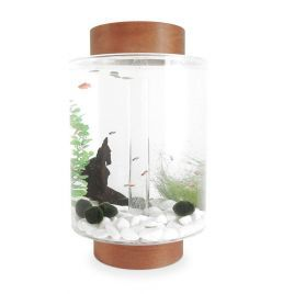 Norrom Aquarium with Light Mahogany Lid and Base (White stones)