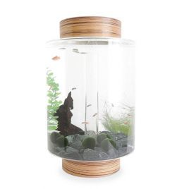 Norrom Aquarium with Zebrano Lid and Base (Black stones)