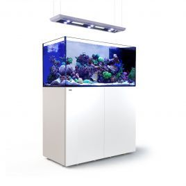 Red Sea Peninsula P500 Deluxe Complete System - White