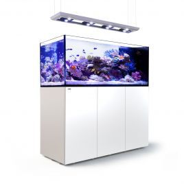 Red Sea Peninsula P650 Deluxe Complete System - White