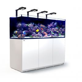 Red Sea Reefer XXL 750 Deluxe Aquarium (White)