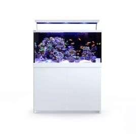 Red Sea Max S-500 LED White