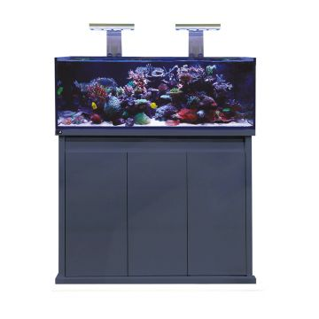 D-D Reef-Pro 1200 - Gloss Anthracite