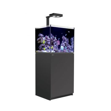 Red Sea Reefer 170 Deluxe Aquarium (Black)