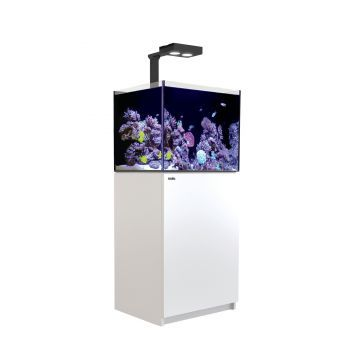 Red Sea Reefer 170 Deluxe Aquarium (White)