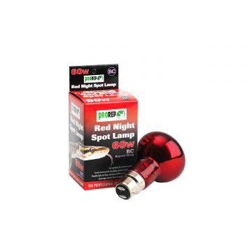 ProRep Red Night Spotlamp 60w - BC (Bayonet)