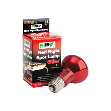 ProRep Red Night Spot Bulb 60W ES (Screw)