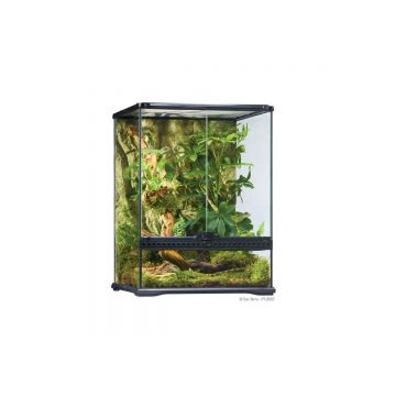 Exo Terra Glass Terrarium Small Tall - 45x45x60cm