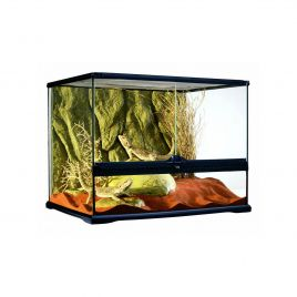Exo Terra Glass Terrarium Medium Wide - 60x45x45cm