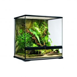 Exo Terra Glass Terrarium Medium Tall - 60x45x60cm