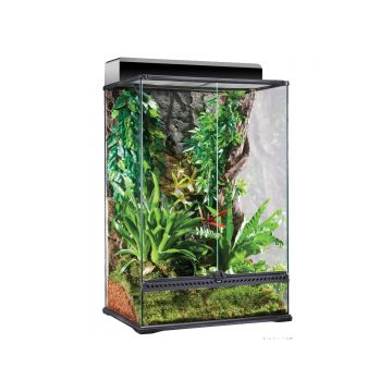 Exo Terra Glass Paludarium Medium X-Tall - 60x45x90cm