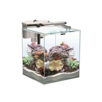 Aquael Nano Reef Duo 49L