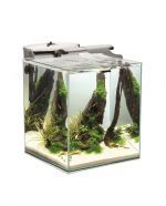 Aquael Shrimp Set Duo 49L