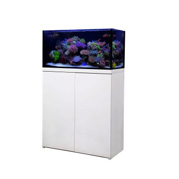 Reef Octopus Lux Classic 90 - White