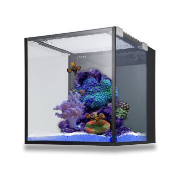 Innovative Marine Fusion Nano 10 Aquarium