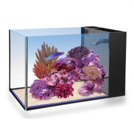 Innovative Marine NUVO Aquarium - Fusion Peninsula 14