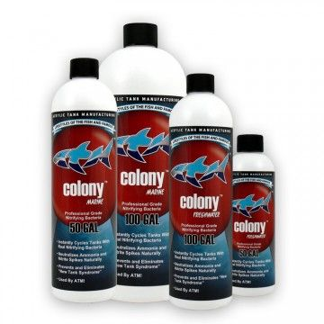 ATM Colony Nitrifying Bacteria Saltwater 946ml (32oz)