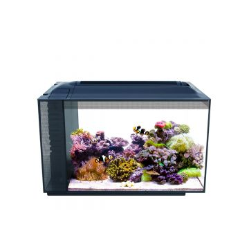 Fluval Sea EVO 52L Aquarium Kit