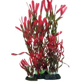 Hugo Kamishi Corkscrew Valissneria Red and Green 13cm