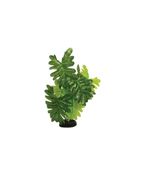 Indian fern 30cm aquatics charterhouse aquatics for Artificial flowers for home decoration india