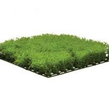 Hugo Kamishi Type C Grass Matting Topiary 12.5x12.5cm