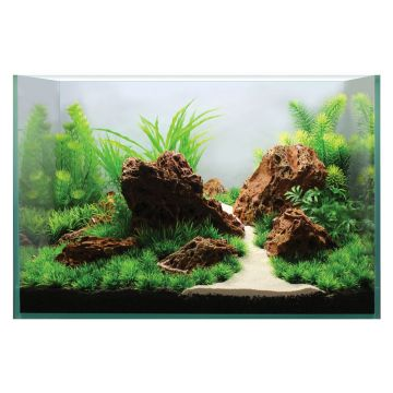 Hugo Kamishi Plant Display 1 60cm (PLANT PACK ONLY)
