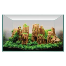Hugo Kamishi Plant Display 2 60cm (PLANT PACK ONLY)