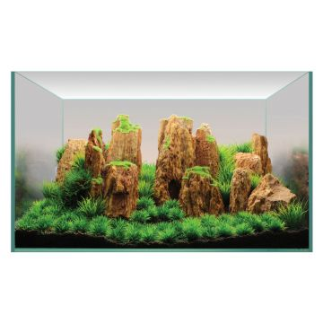 Hugo Kamishi Plant Display 2 60cm (ROCK PACK ONLY)